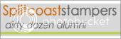 Dirty Dozen Alumni