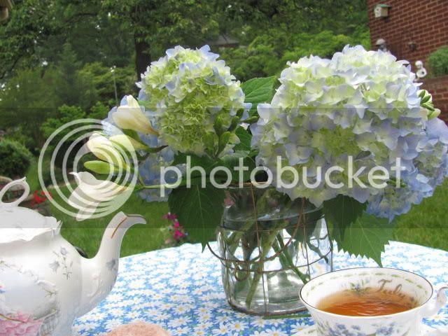 photo Spring2012096.jpg