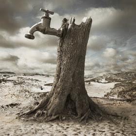 Dry by Dariusz Klimczak (Kleemass) on 500px.com