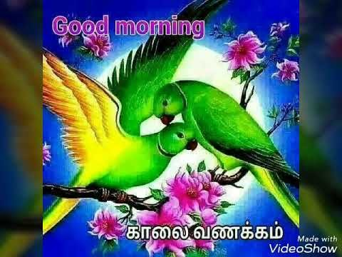 Unique Kalai Vanakkam Good Morning Tamil