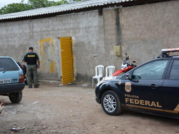 Polícia Federal em Pernambuco desmontou rinha de galo em Gravatá (Foto: Divulgação/Polícia Federal)