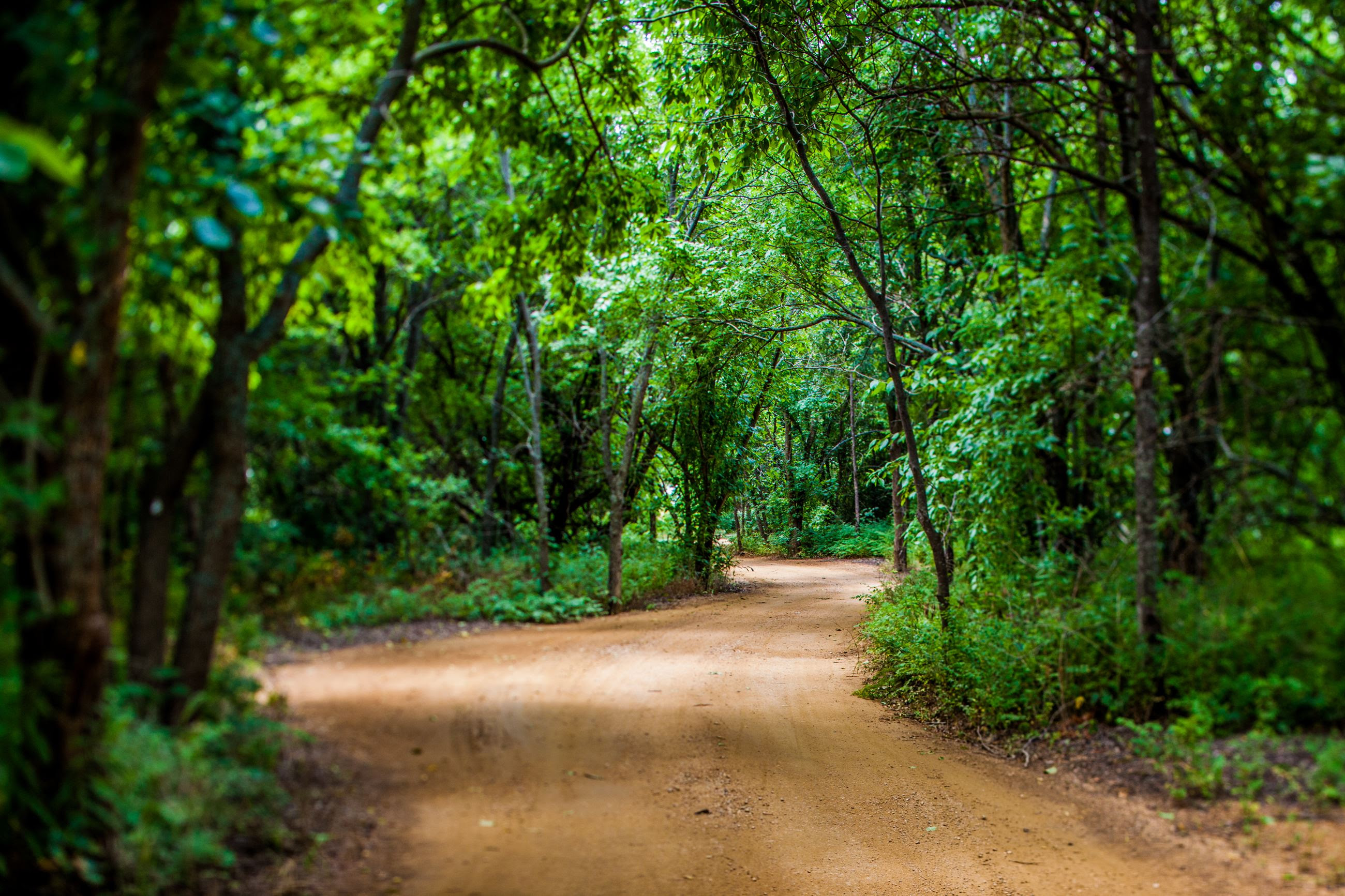 Nature  Trails  Visit The Colony TX