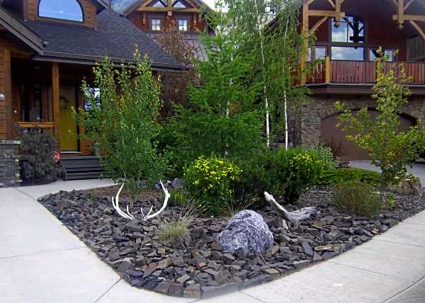 mr adam  landscaping ideas for front yard circle drive