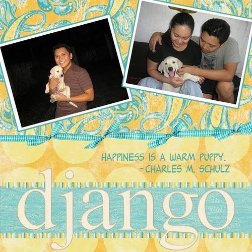 Django Boy