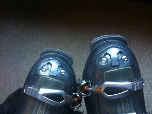 Ski twins