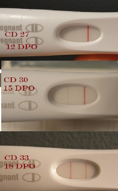 Negative Pregnancy Test 12 Dpo But Positive Later