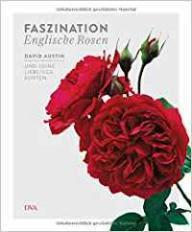 Austin Faszination Rosen
