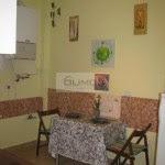 #domenii #Herastrau #elias #Piatadomenii #3camere #vila #rent #inchirierenord #rezidential # (23)