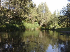 Draper's Crossing, South Pine River