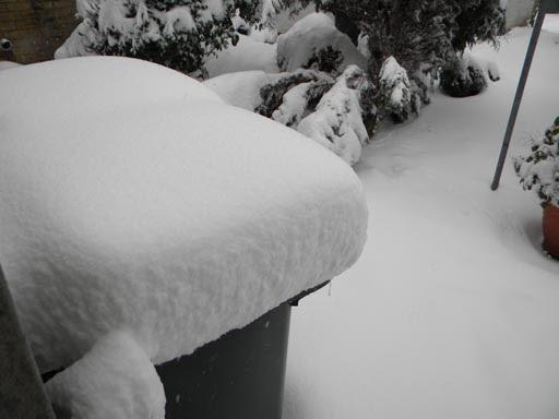 Snow 023-mar3.jpg