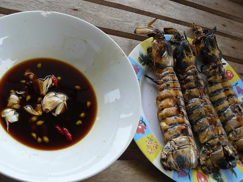 Mantis Crab/Squilla; Caohagan (Cebu, Philippines)