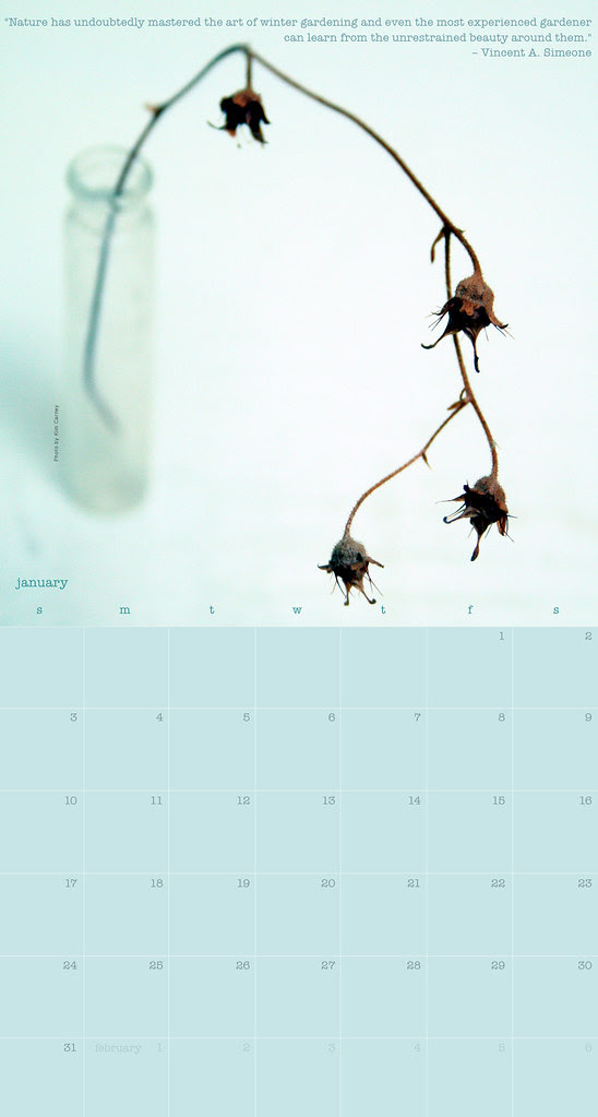 January 2010 calendar
