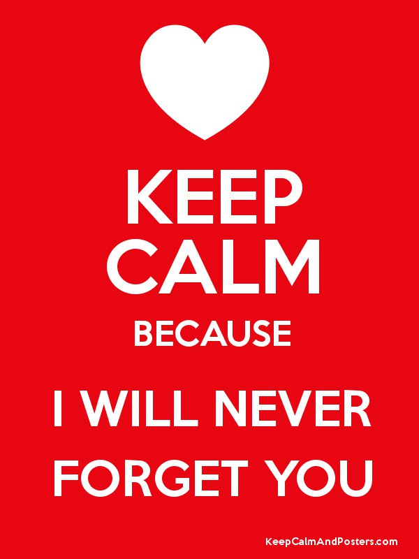 Keep Calm Because I Will Never Forget You Keep Calm And Posters