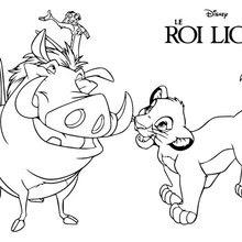 Coloriages Le Roi Lion Simba Timon Et Pumba Frhellokidscom