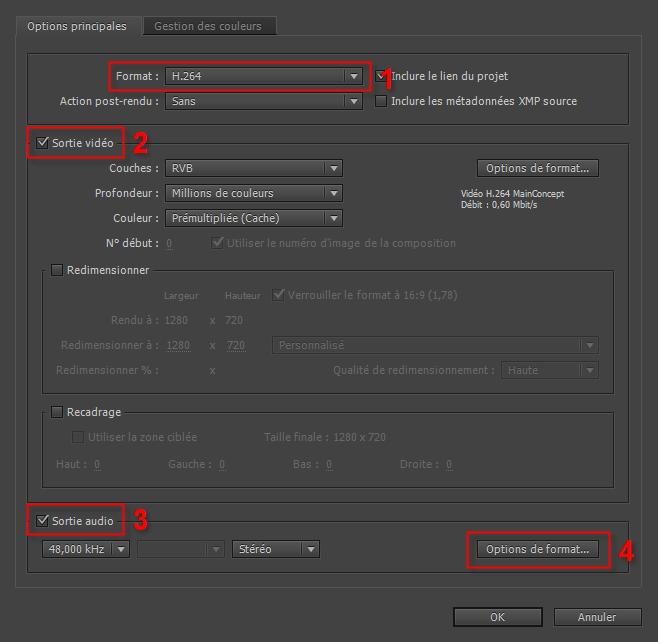 Exporter Une Vidéo En H264 Dans After Effects