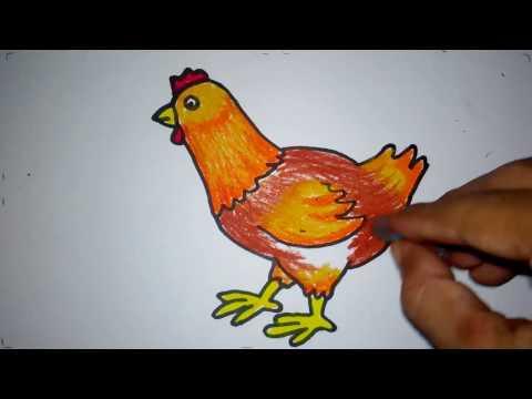 13 78 Mb Ayam Warna Stafaband Download Lagu Mp3