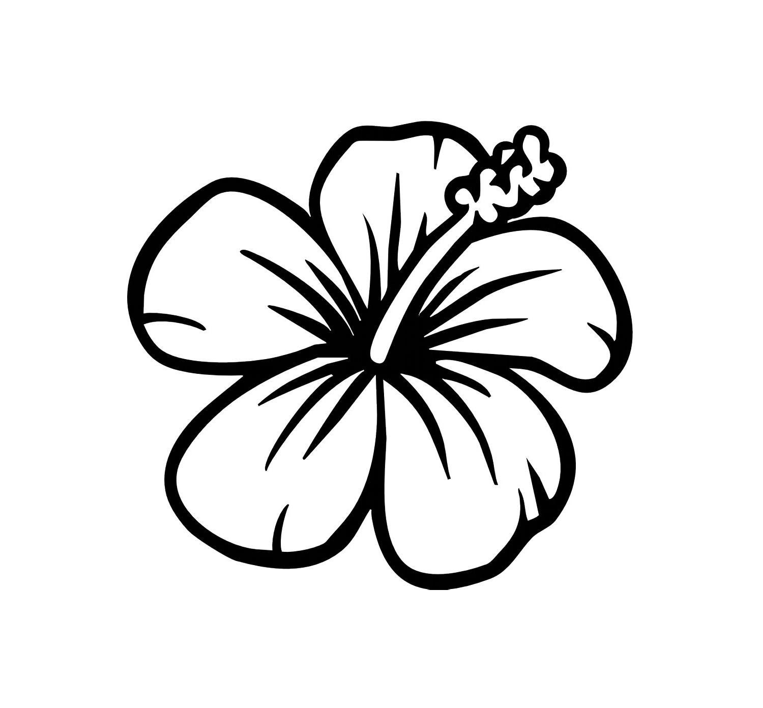 Free Hibiscus Flower Drawings Download Free Clip Art Free Clip Art