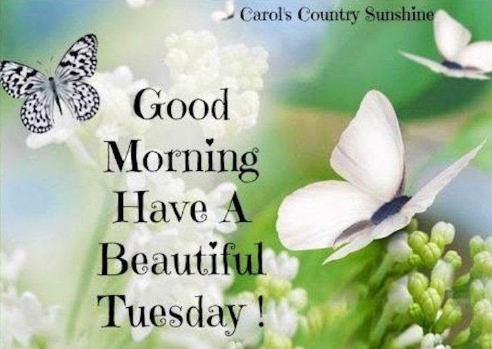 Good Morning Happy Tuesday Pictures Photos And Images For Facebook