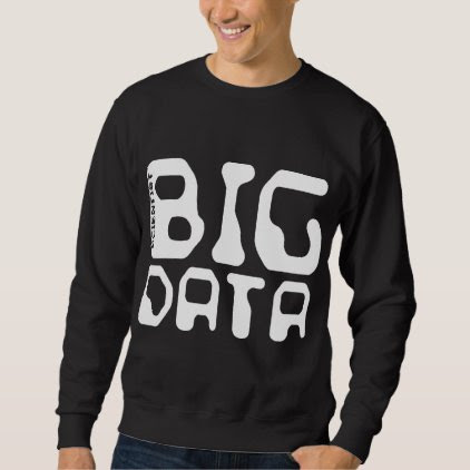 Big Data Scientist Sweatshirt