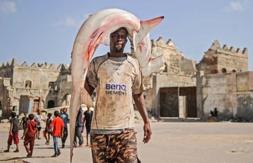 Somali Voittaa Aina