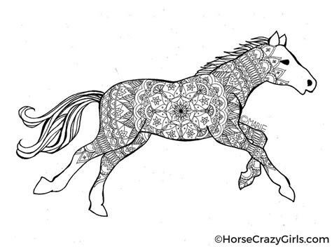 horse coloring pages  printables