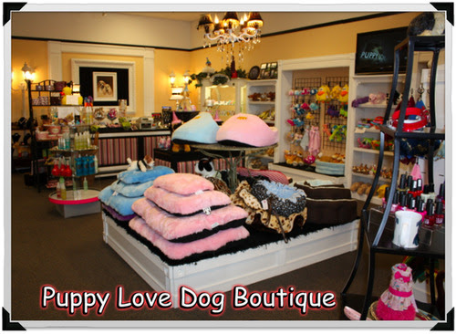 Vender Of The Week Puppy Love Dog Store Vend Retail Blog