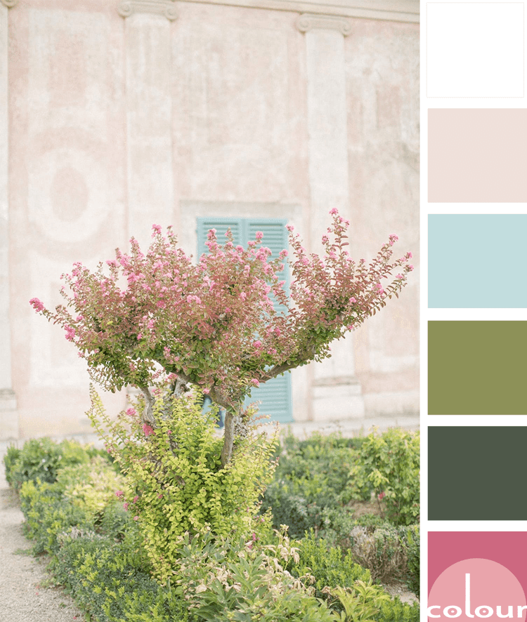A PINK AND GREEN COLOR PALETTE WITH A TOUCH OF AQUA BLUE ...