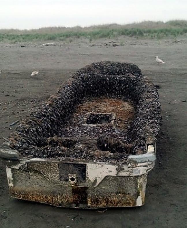 Perierga.gr - Βάρκα-φάντασμα από το τσουνάμι έφτασε στις ΗΠΑ!