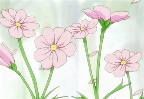 anime sakura flower tumblr