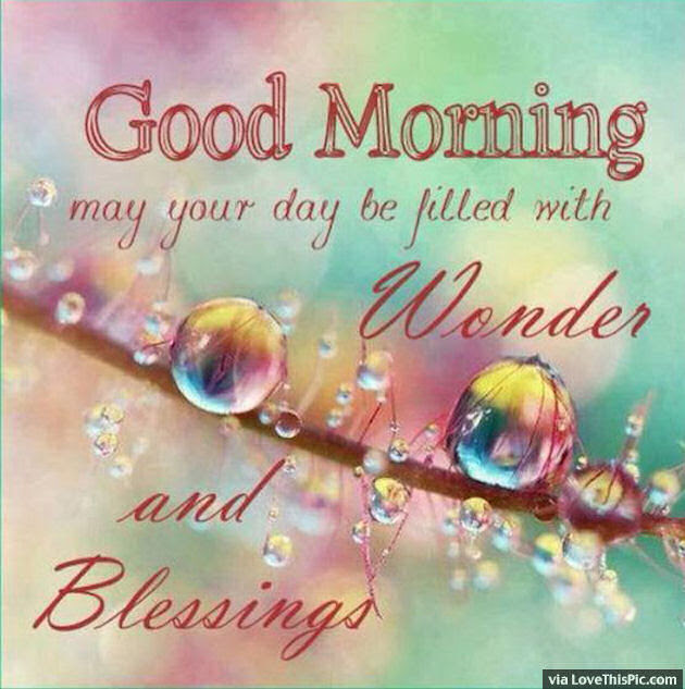 Good Morning May Your Day Be Filled With Wonder Pictures Photos