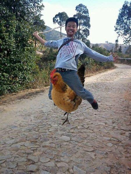 chinese photoshop trolls    funnier