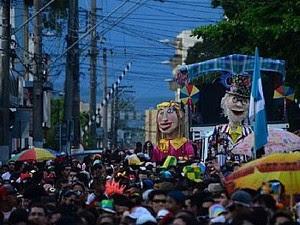 Carnaval luizense esteve em Pinda em 2014 (Foto: Fernando Noronha/Prefeitura de Pinda)