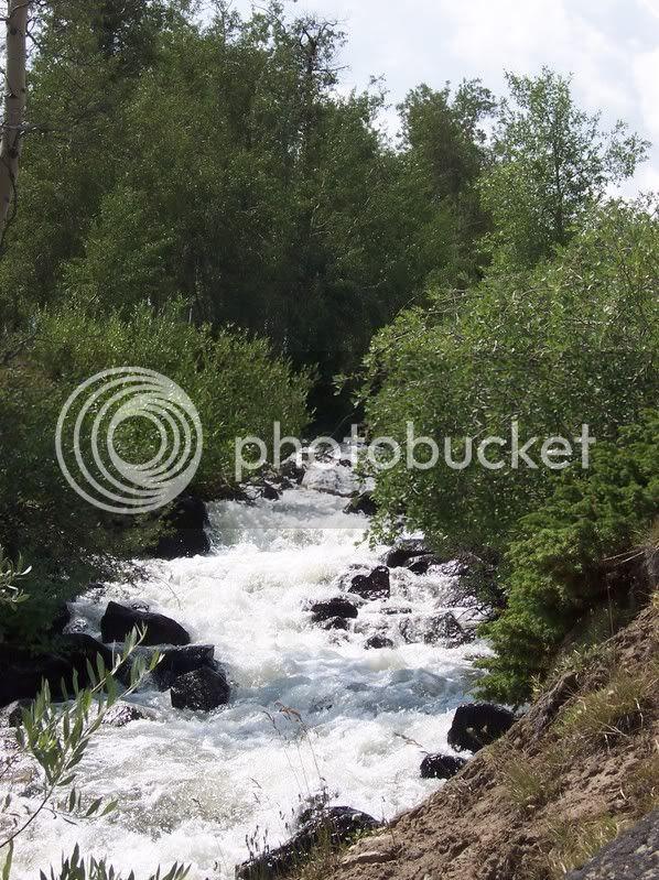 Rapid Creek rapids