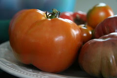 tomatoes 5