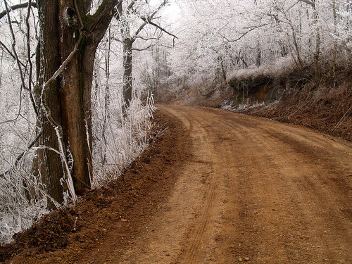 Into the frost...