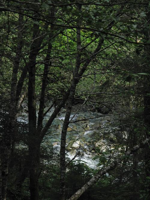 Gold Creek as seen from The Flume, Juneau, Alaska