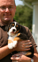 ed puppy