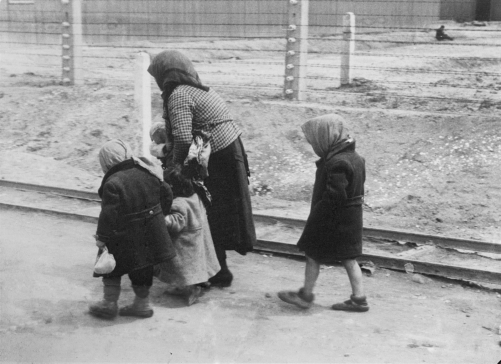 File:Bundesarchiv Bild 183-74237-004, KZ Auschwitz-Birkenau, alte Frau und Kinder.jpg