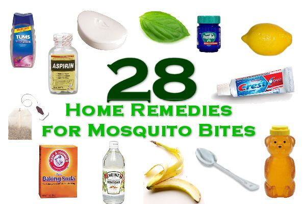 home remidies for mosquito bites