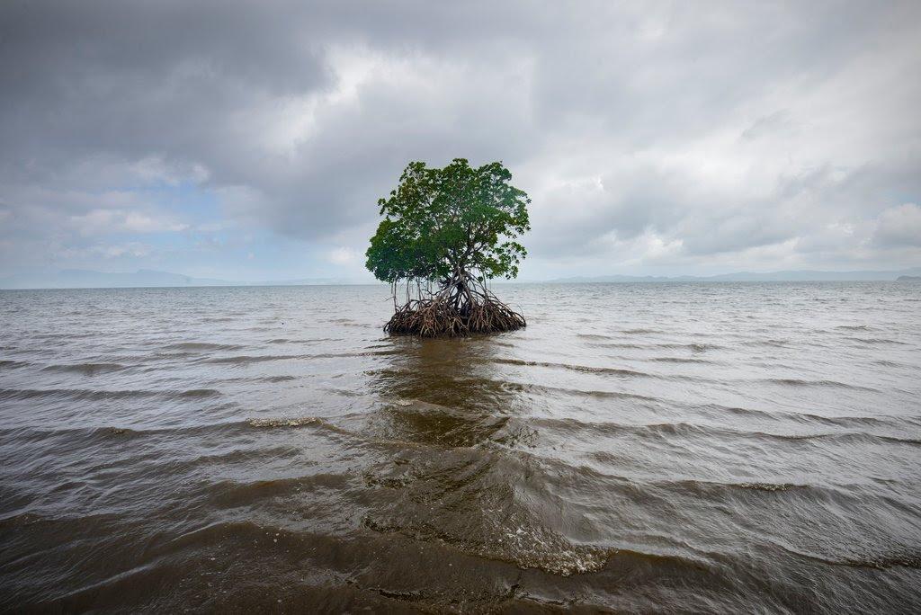 Climate-Fiji-slide-5046-jumbo.jpg