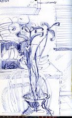 Irises - monotone
