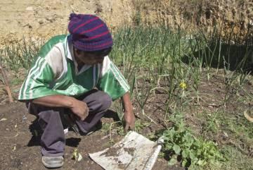 Los Andes siembra lluvia para hacer frente a la sequía