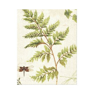 Ivies and Ferns Stretched Canvas Print