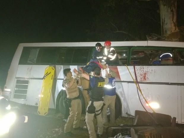 Segundo a PRF, acidente aconteceu durante uma tentativa de assalto na BR-369; ônibus seguia do interior de São Paulo para o Paraguai (Foto: PRF/ Divulgação)