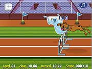 Jogar Scooby doo hurdle race Jogos