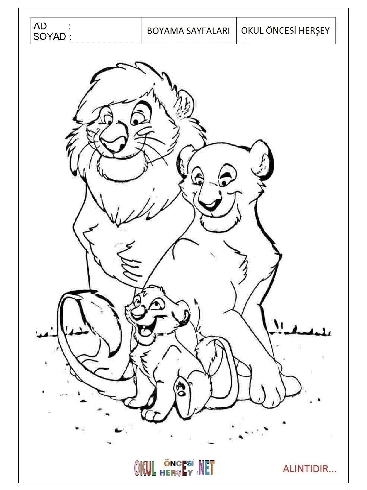 Aslan Boyama Sayfaları