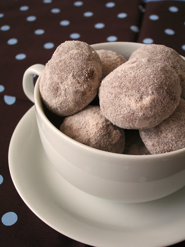 Cocoa-chocolate chip pillows