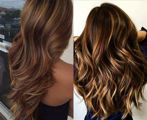 hypnotizing long brown hair  highlights hairdromecom