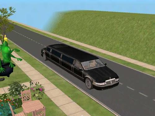 Limousine up close