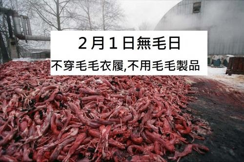2月1日無毛日 爭普選護動物權益